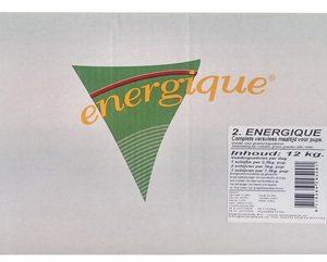 Energique nr 2 puppy
