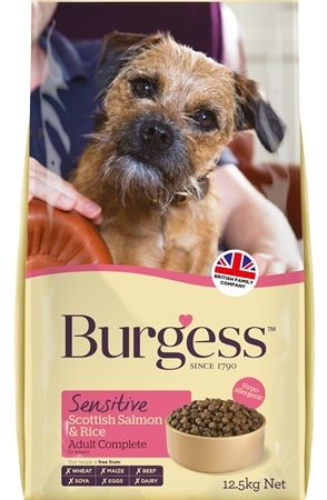 Burgess dog sensitive schotse zalm / rijst
