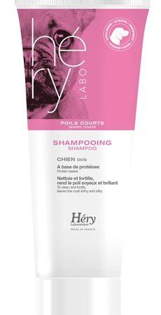 Hery shampoo voor kort haar